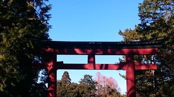 003 氷川神社.jpg