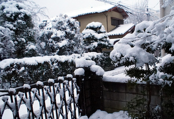 024 雪.jpg