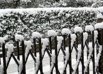 048  雪 .jpg