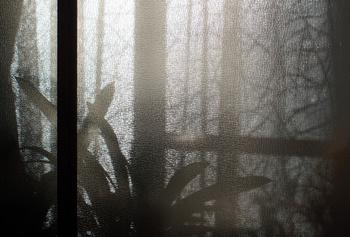 049 雪見窓.jpg
