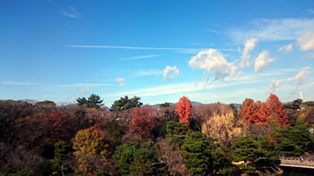1174 京都の雲.jpg