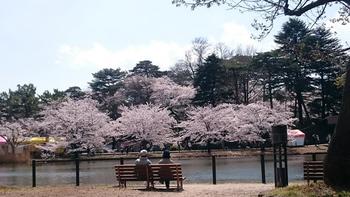 276 大宮公園.jpg