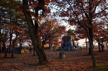 1204 盛岡城跡公園.jpg