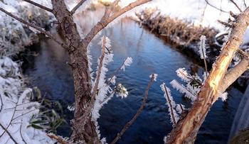 196 雪.jpg