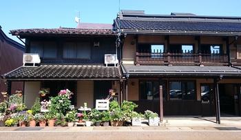 713 高田小町.jpg